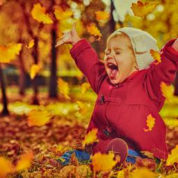 Hoje começa o Outono